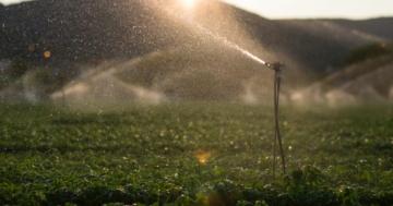 Brunnenpumpe Gartenbewässerung